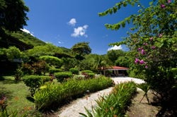 Picture of the garden at Rancho Armadillo Costa Rica_hotels_ resorts_ rancho armadillo_ beach_ playas del coco_ adventure inns of costa rica_costa rica airfares_costa rica car rentals_costa rica trip advisor_guanacsate_rancho armadillo_costa rica tours?costa rica surfing_costa rica fishing_costa rica volcanoes_